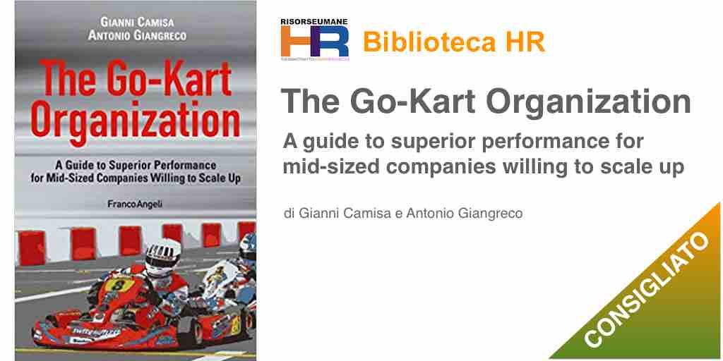 The go-kart organization. A guide to superior performance for mid-sized companies willing to scale up
