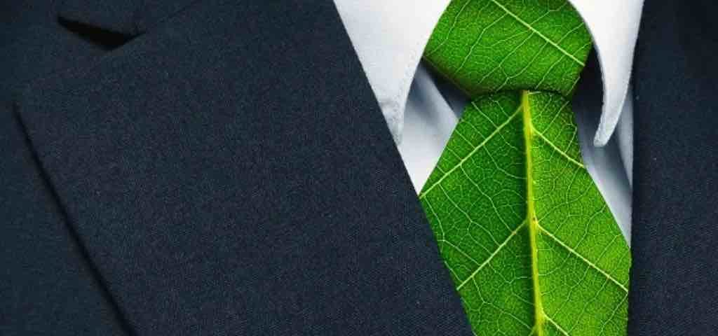Il Green HR tra business sostenibile e motivazione dei collaboratori