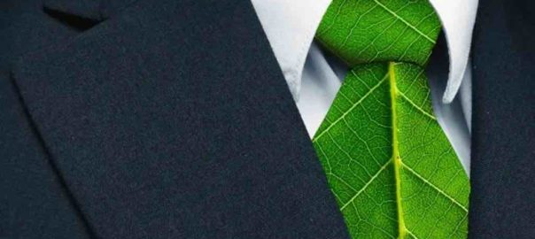 Il Green HR tra business sostenibile e motivazione dei collaboratori